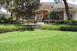 Graham Landscape - Tampa Bay Quality Landscape Services ...